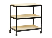 Double Shelf Book Trolley