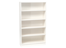 Shallow Bookcase